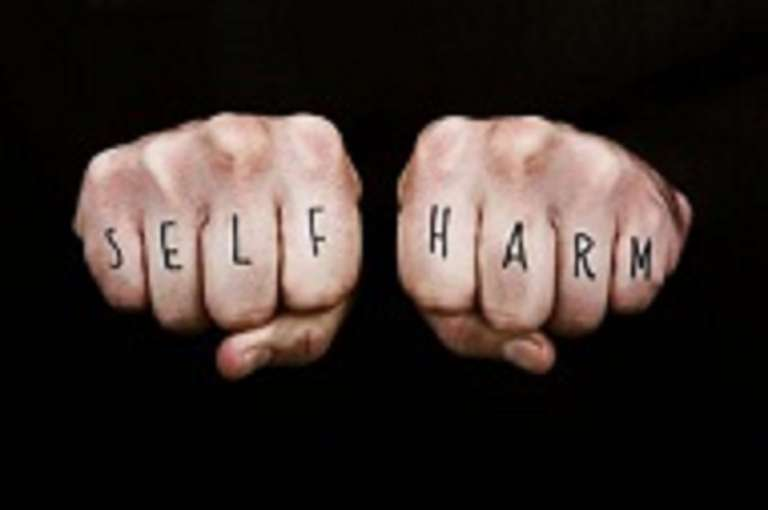 Understanding and Responding to Self Harm and Suicide in Young People