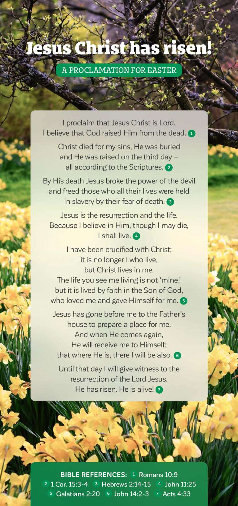 A Proclamation For Easter - Jesus Christ has risen!