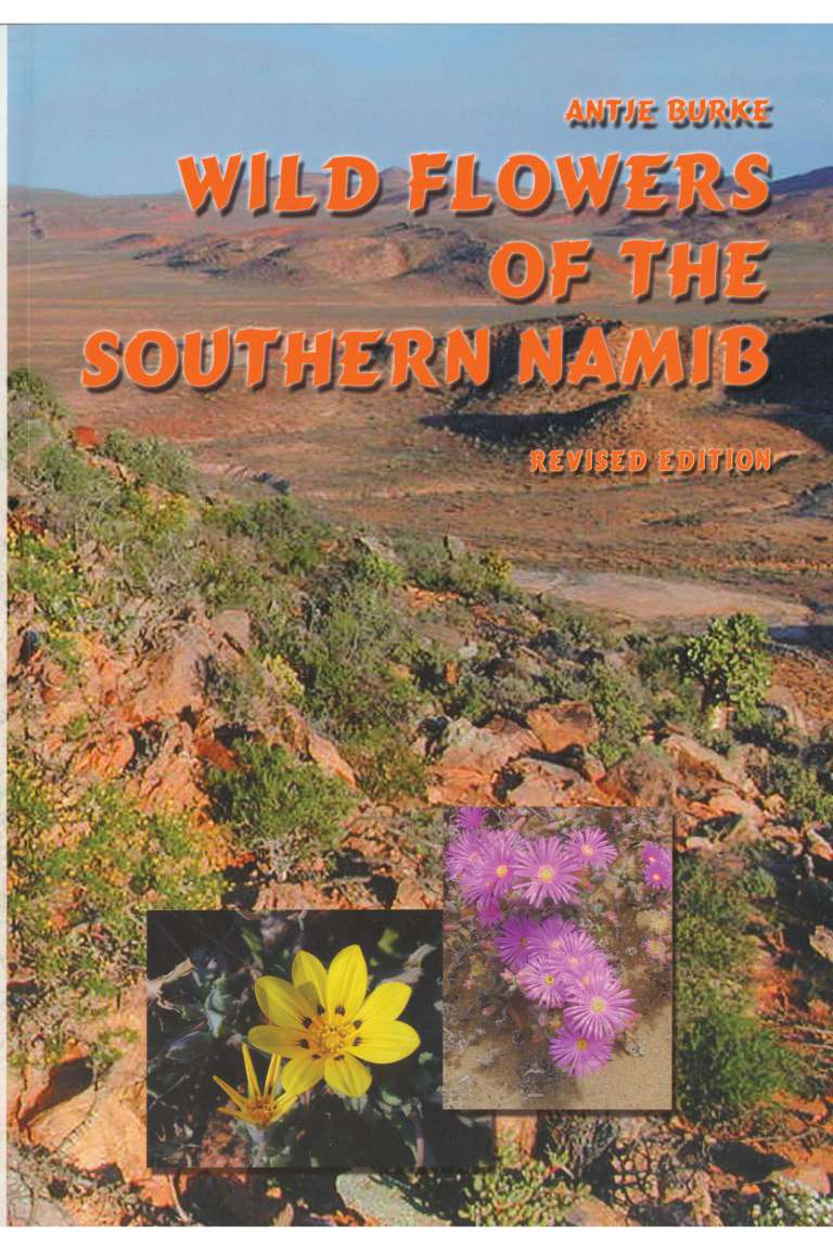 Wild Flowers of the Southern Namib Front