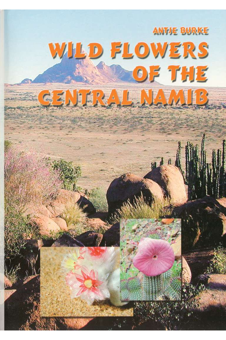 Wild Flowers of the Central Namib Front