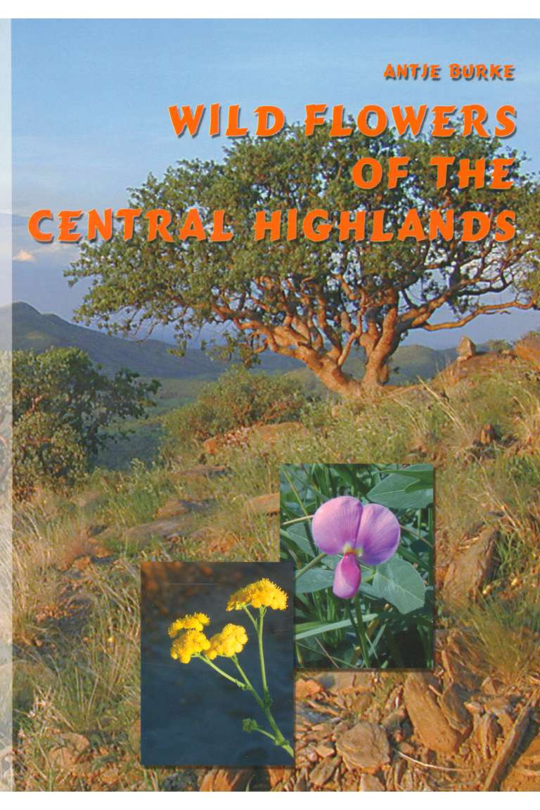 Wild Flowers of the Central Highlands Front