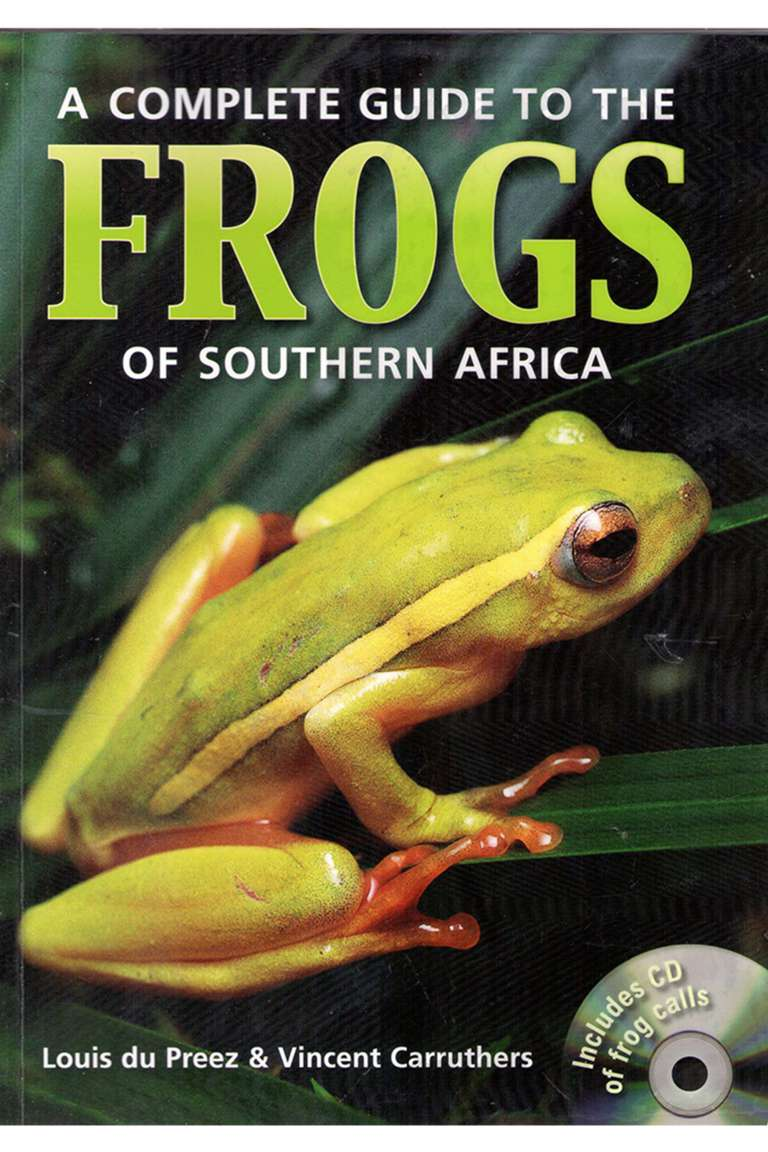 Frogs Front