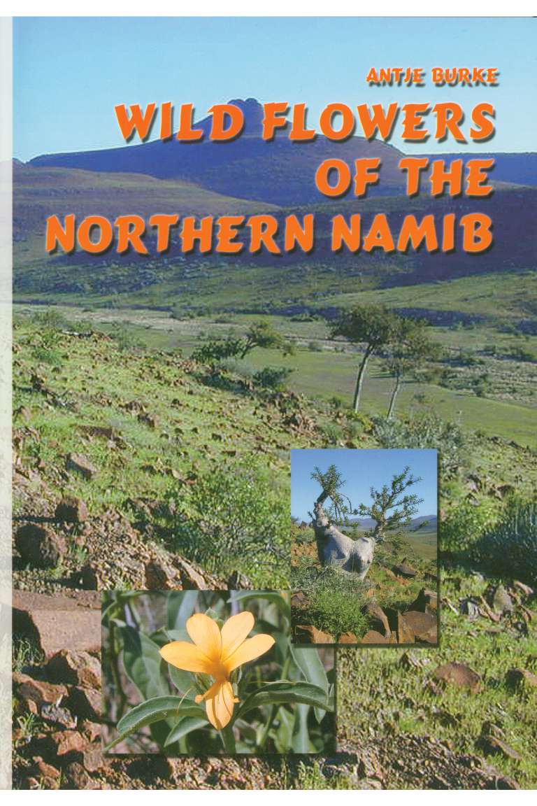 Wild Flowers of the Northern Namib Front