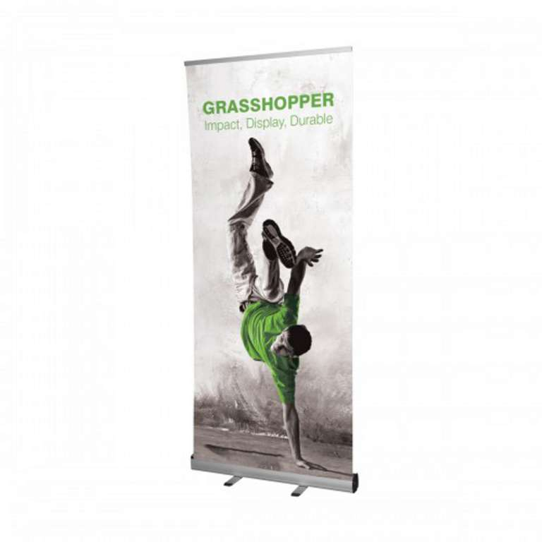 Colyer Pure 850mm Silver Banner Stand